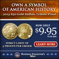 2014 Buffalo Tribute Proof