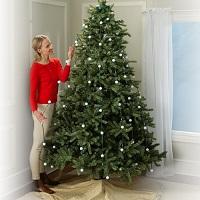 Tree Dazzler