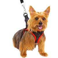 Comfy Control Harness