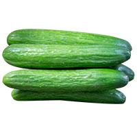 Cucumber Orient Express